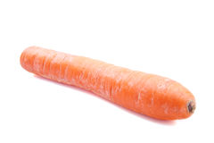 Fresh big carrot Royalty Free Stock Images