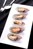Fresh big mussels Stock Photos