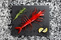 Fresh big red shrimp on ice on a black stone table Royalty Free Stock Photos