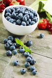 Fresh bilberries Royalty Free Stock Photo