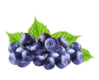 Fresh Bilberries blueberries. Isolated on the white background Royalty Free Stock Photos