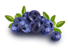 Fresh Bilberries blueberries, isolated. On white background Stock Photos