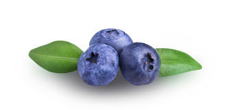 Fresh Bilberries blueberries,  on white. Background Stock Images