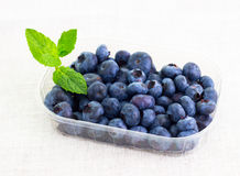 Fresh bilberries in a bowl. Some fresh bilberries in a bowl Stock Photos