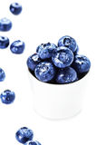 Fresh bilberries in a bowl  isolated on white background close u Royalty Free Stock Photo