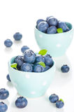 Fresh bilberries in a bowl Stock Images