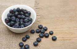 Fresh bilberries in a bowl Royalty Free Stock Photo