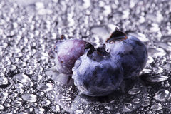 Fresh Bilberries. Close-up background Stock Photos