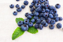Fresh bilberries with mint leaf. Some fresh bilberries with mint leaf Royalty Free Stock Image