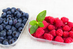 Fresh bilberries and raspberries in a bowl. Some fresh bilberries and raspberries in a bowl royalty free stock photo