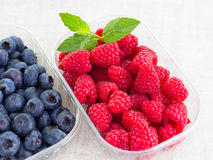 Fresh bilberries and raspberries in a bowl. Some fresh bilberries and raspberries in a bowl royalty free stock images