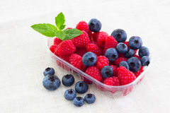 Fresh bilberries and raspberries in a bowl. Some fresh bilberries and raspberries in a bowl stock photo