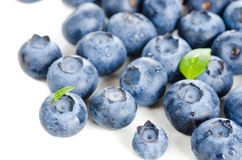 Fresh bilberries Stock Photos