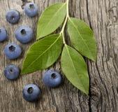 Fresh Bilberries. On Wooden Background Stock Photo