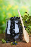 Fresh bilberry Stock Photography