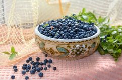 Fresh bilberry. Fresh blueberries in a clay bowl. Нealthy nutrition Royalty Free Stock Photography