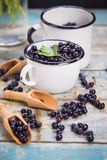 Fresh bilberry in cup Stock Image