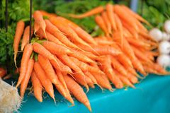 Fresh bio carrots on farmer market Royalty Free Stock Images