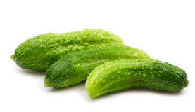 Fresh bio cucumber Royalty Free Stock Photo