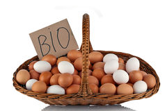 Fresh Bio farm eggs Royalty Free Stock Photography