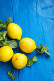 Fresh bio lemons with mint leaves herb on painted wood backgroun Royalty Free Stock Photo