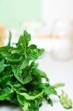 Fresh bio mint. From the garden stock photo