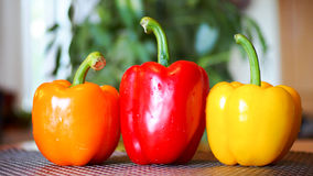 Fresh bio peppers Royalty Free Stock Photo