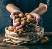 Fresh Bio Potatoes on wooden background closeup royalty free stock image