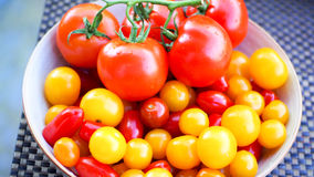 Fresh bio tomatoes Royalty Free Stock Images