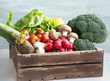 Fresh bio vegetables in wooden crate with radish,salad,mushrooms Royalty Free Stock Image