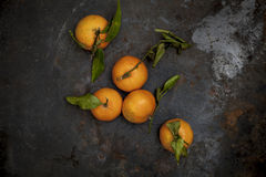 Fresh biology tangerines on black background Stock Image