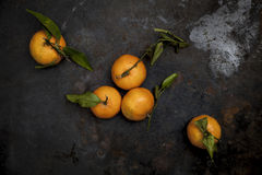 Fresh biology tangerines on black background Royalty Free Stock Photo
