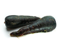 Fresh black carrots Stock Photography