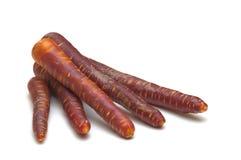 Fresh black carrots Royalty Free Stock Photo