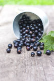 Fresh black currant in the glass, on rustic wooden board. Stock Photography