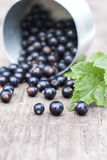 Fresh black currant in the glass, on rustic wooden board. Stock Photo