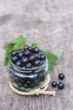 Fresh black currant in the glass, on rustic wooden board. Royalty Free Stock Photography