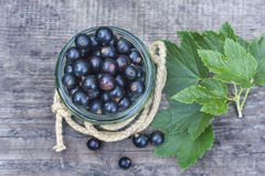 Fresh black currant in the glass, on rustic wooden board. Royalty Free Stock Photos