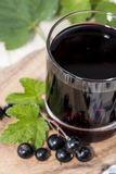 Fresh Black Currant juice Stock Photography