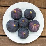 Fresh black figs age paintings, fresh fig fruit in dish, Royalty Free Stock Images