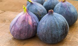 Fresh black figs age paintings, fresh fig fruit in dish, Stock Image