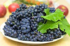 Fresh black grape Royalty Free Stock Image
