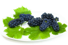 Fresh black grape with green lleaves Royalty Free Stock Photography