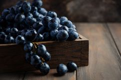 Fresh Black Grapes in Dark Wooden Tray on Wooden Table. Selective focus Copy Space stock photo