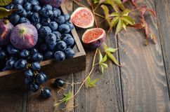 Fresh Black Grapes and Figs in Dark Wooden Tray on Wooden Table Stock Photo