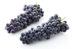 Fresh black grapes Stock Images