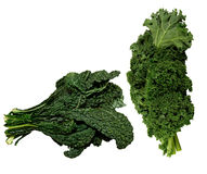 Fresh black and green Kale Royalty Free Stock Photos