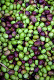 Fresh black and green olives sold at a market Stock Photography