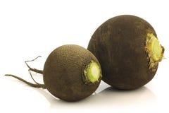 Free Fresh Black Radish (Raphanus Niger) Stock Photos - 21792823