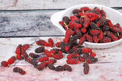 Fresh black and red ripe mulberries on wood Royalty Free Stock Images